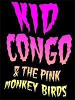Concert au Vecteur : Ungawa !  Kid Congo est là !