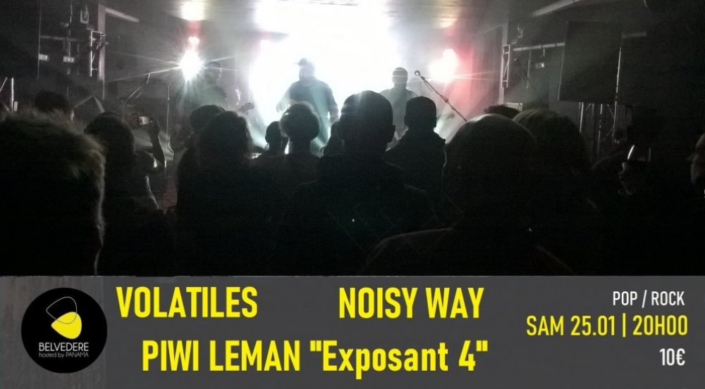 VOLATILES - NOISY WAY - PIWI LEMAN